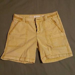 Anthropologie Hei Hei shorts size 27